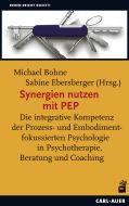 Synergien nutzen mit PEP