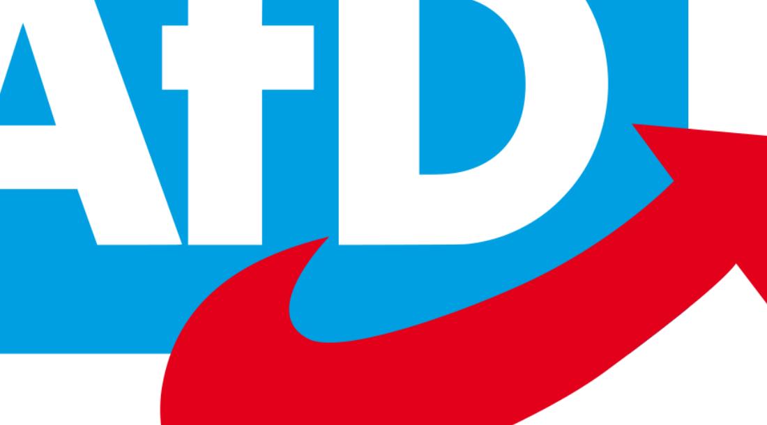 Die Homogenisierung der AfD