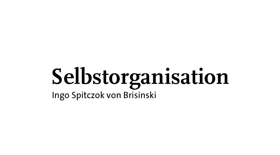 Selbstorganisation